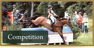 Horse riding competitions
